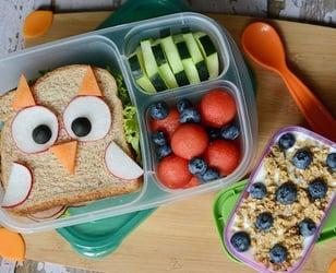 Photo Recette Une Boîte à Lunch Bento Hibou
