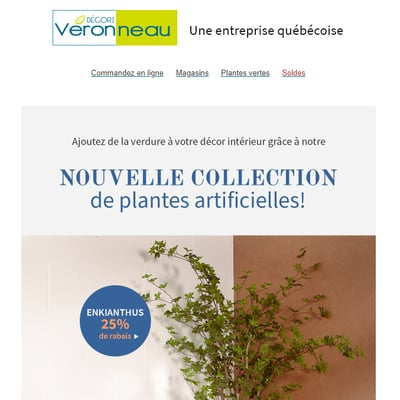 Image de la Promotion De Nouvelles Plantes pour illuminer votre Décor!