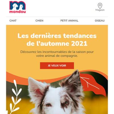 Image de la Promotion Alerte aux Tendances Automnales 2021!